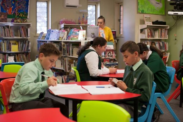 St Francis Xavier Catholic Primary School Ashbury - students in library doing school work