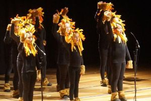 St Francis Xavier Catholic Primary School Ashbury - students on stage for a musical